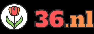 36.nl